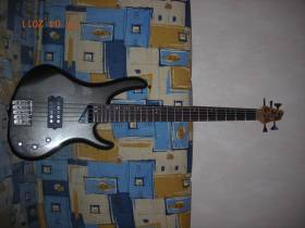 Washburn RB 2500