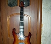 B.C.Rich Assassin QX 6 (AGQX6TB)