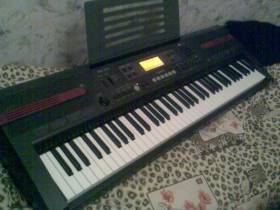 Casio WK-110.CTK-810