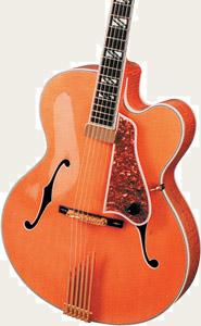 Акустическая гитара (полый корпус)